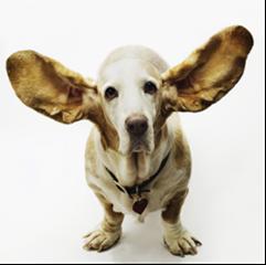 Kijken met je oren en luisteren met je ogen
