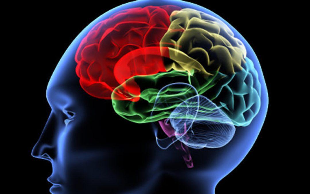 Het slimme onbewuste brein van klanten